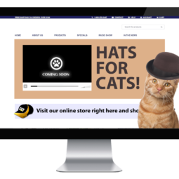 Website for cats who want hats